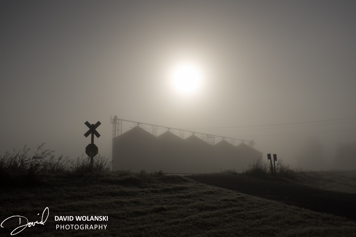 Sun and containers in fog near Clarksdale MS at railroad crossing