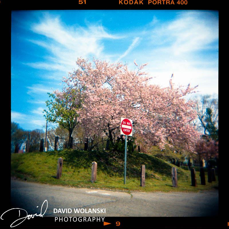 Do not Enter, Silver Lake Park, Dover, DE