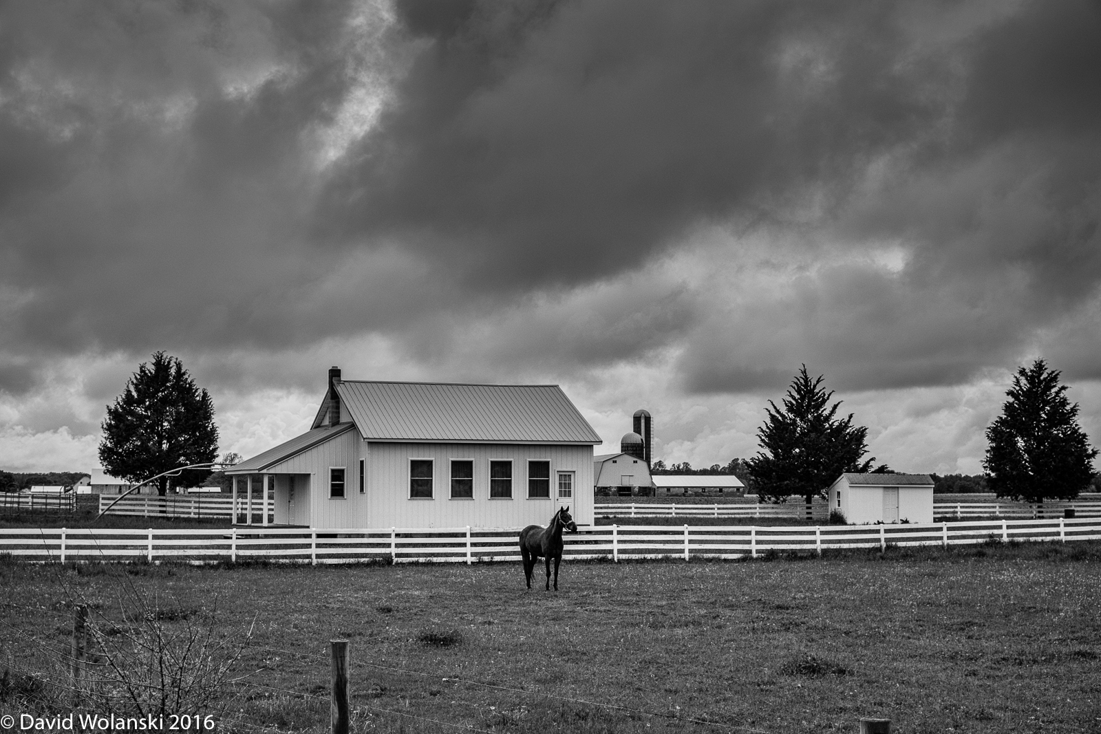 Horse and Amish school house west of Dover, DE
